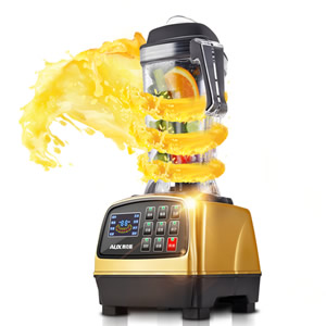 powerful blender food processor