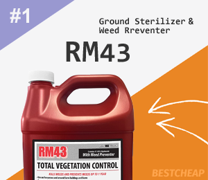 Best Cheap Ground Sterilizer