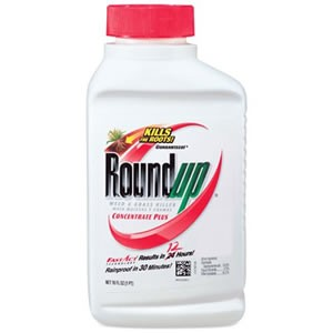 Roundup Weed and Grass Killer Concentrate Plus Review